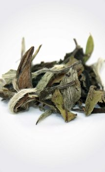 White Peony Tea – Bai MuDan